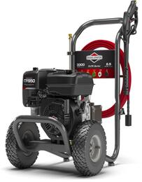Briggs and Stratton 020725
