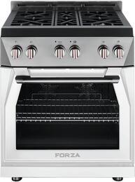 Forza FCK309003