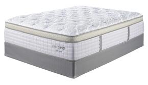 Sierra Sleep M95831M81X32
