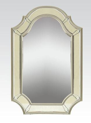 Acme Furniture 90131 Selby Series Rectangular Portrait Wall Mirror