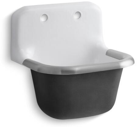Kohler K67140  Sink