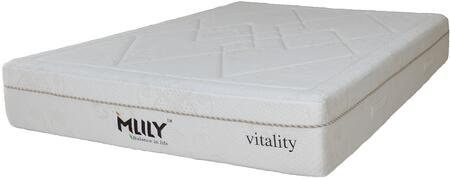 MLily AMBIANCE11Q Ambiance Series Queen Size Memory Foam Top Mattress