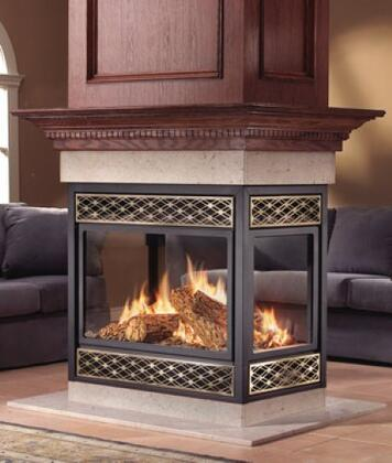 Napoleon BGNV40N4  B-Vent Natural Gas Fireplace