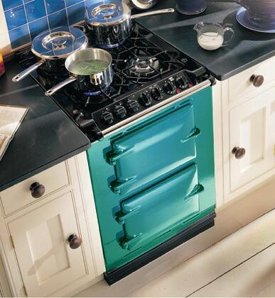 "AGA ACMPNGSIJAD 24"" Companion Series Dual Fuel Freestanding Range with Sealed Burner Cooktop, 1.5 cu. ft. Primary Oven Capacity, in Jade"