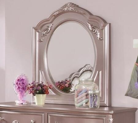 Coaster 400894  Mirror