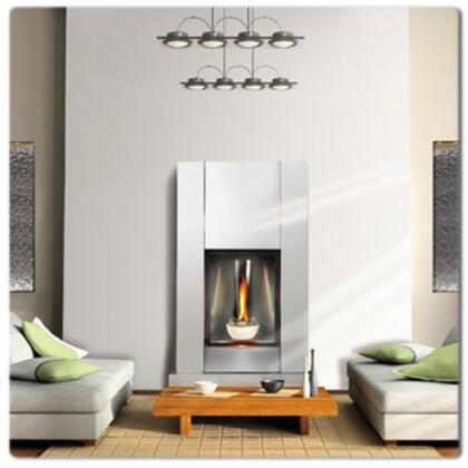 Napoleon GD82NTT  Direct Vent Natural Gas Fireplace