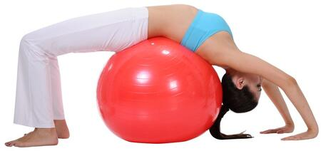Sunny Health and Fitness Gym Ball