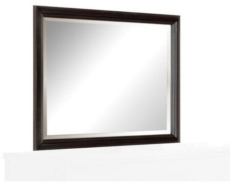 Acme Furniture Raleigh Mirror