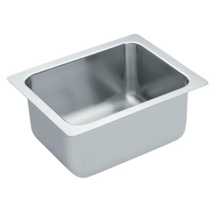 Moen 22124 Kitchen Sink