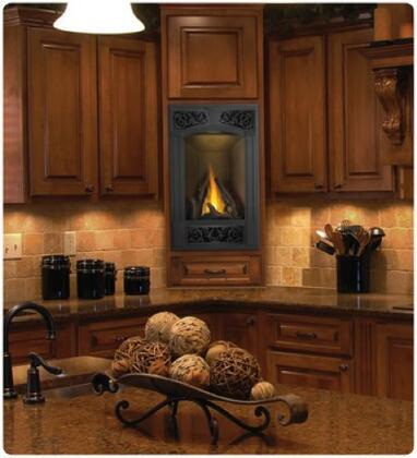 Napoleon GD19N Wall Mountable Direct Vent Natural Gas Fireplace