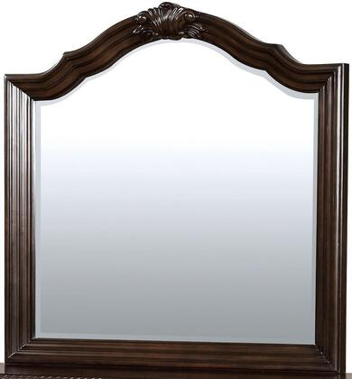 Furniture of America CM7671M Edinburgh Series  Mirror