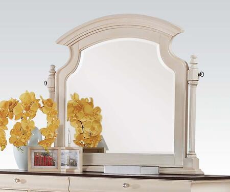 Acme Furniture 24424  Mirror