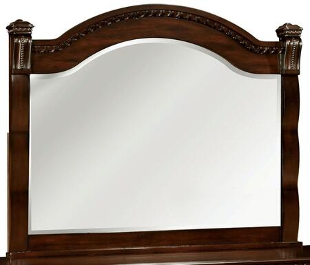Furniture of America CM7791M Burleigh Series  Mirror