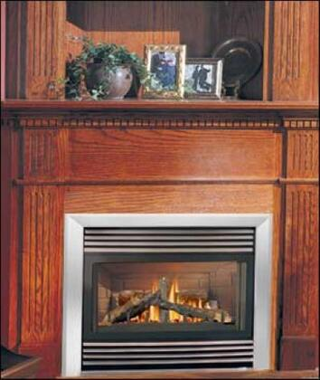 Napoleon GD33NR  Direct Vent Natural Gas Fireplace