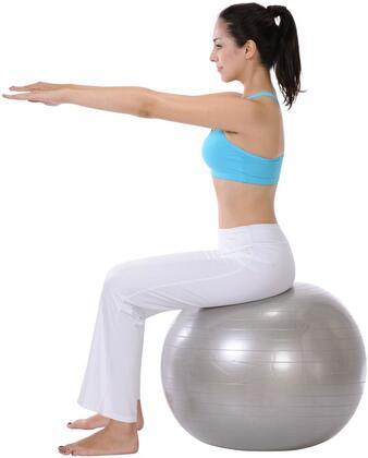 Sunny Health and Fitness Gym Ball