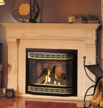 Napoleon GD36NTR  Direct Vent Natural Gas Fireplace