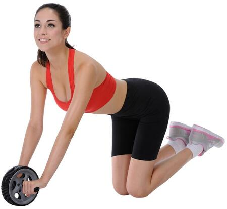 Sunny Health and Fitness Ab Roller Exercise Wheel