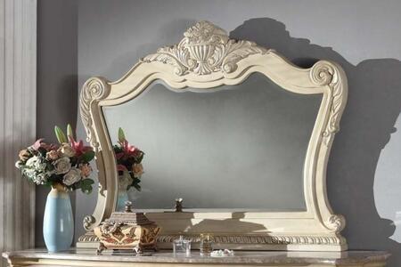 Main Image Mirror